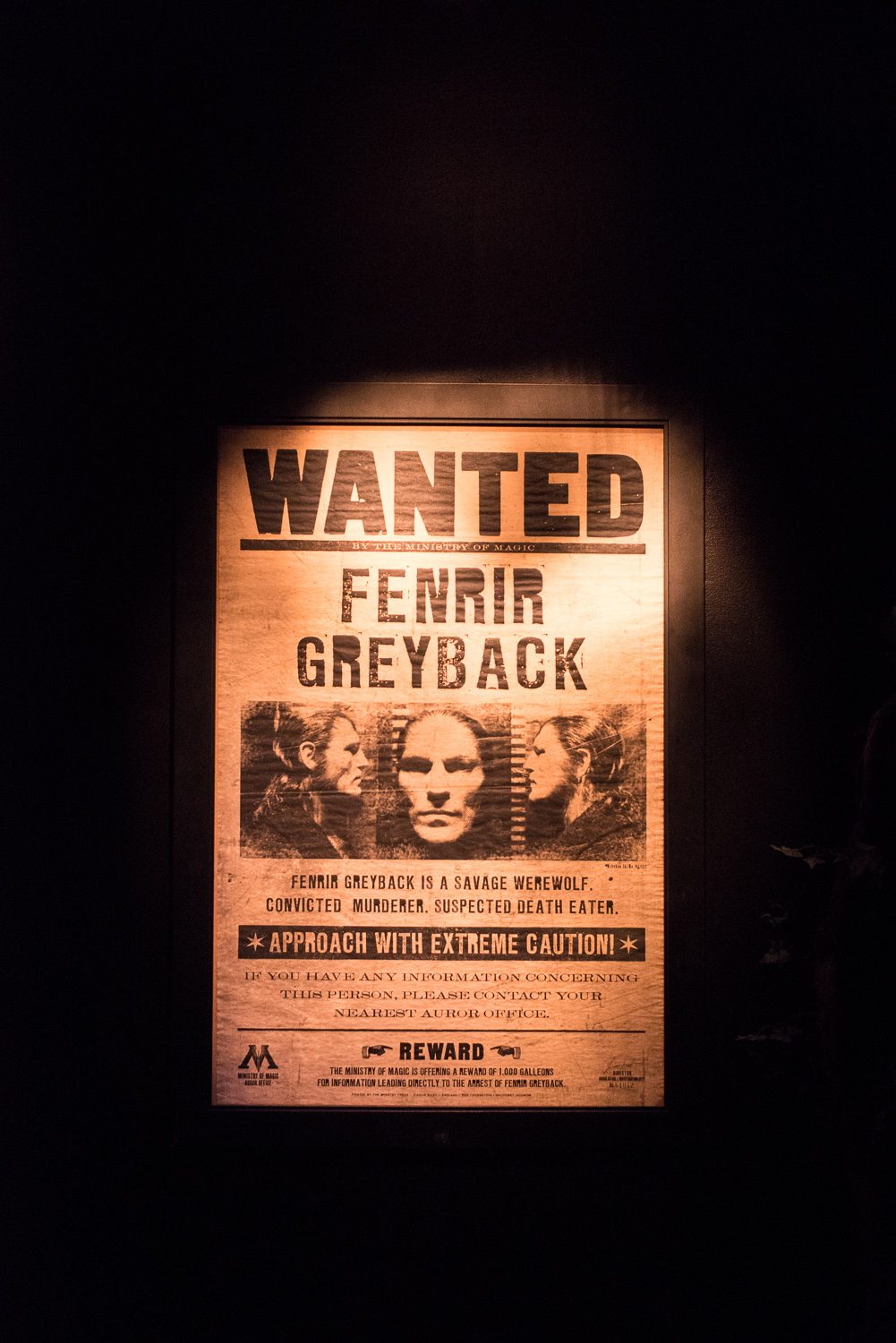 Blog Mode And The City - Exposition Harry Potter Paris - Fenrir Greyback