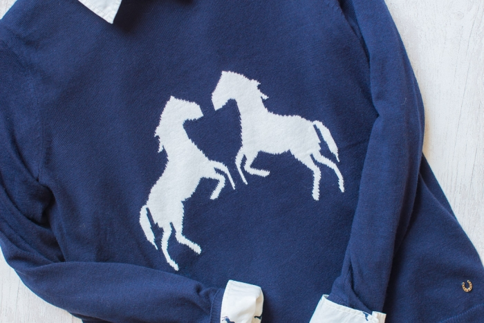 Blog-Mode-And-The-City-lifestyle-5-petites-choses-143-hm-pull-chemise-chevaux