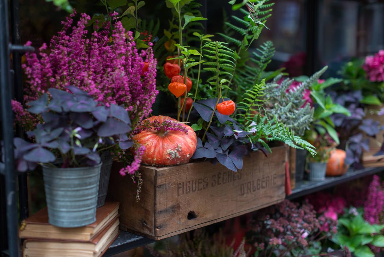 Blog-Mode-And-the-City-5-Petites-choses- Fleuriste-automne
