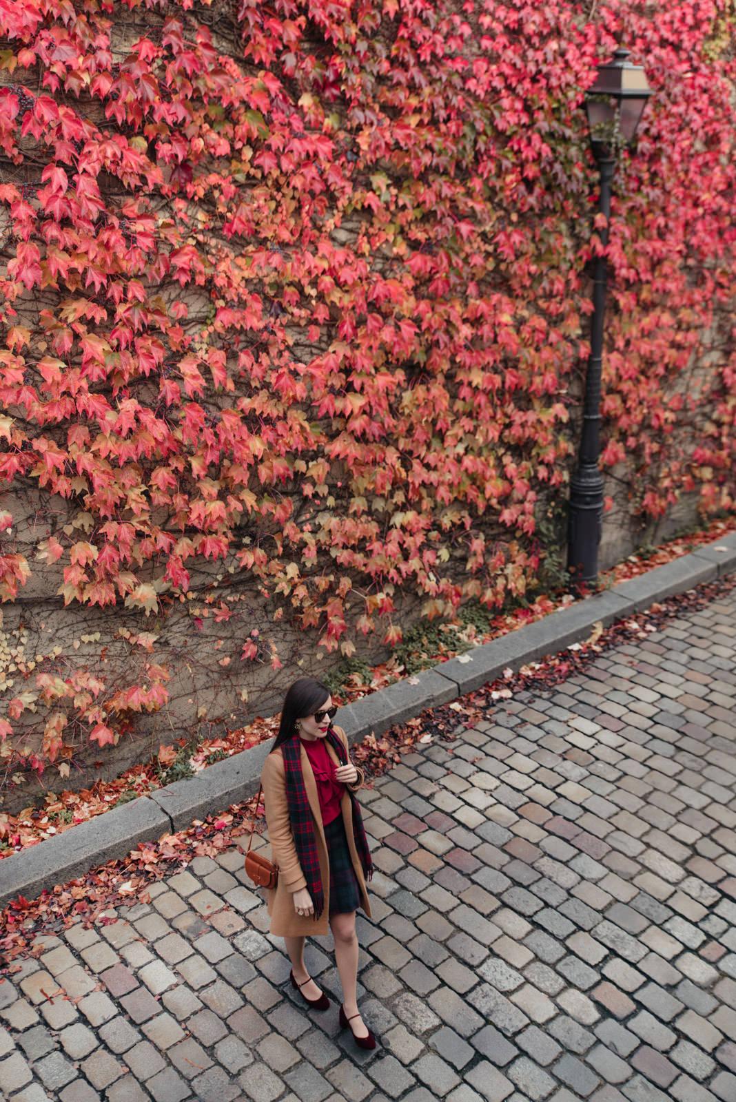 Blog-Mode-And-The-City-Looks-Mur-de-Feuilles-Montmartre
