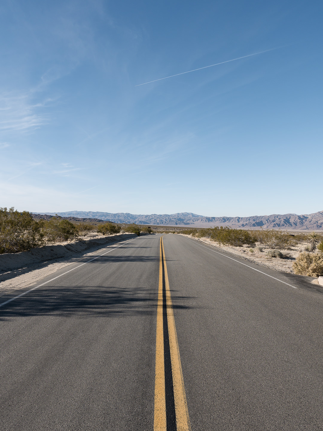 joshua tree roads