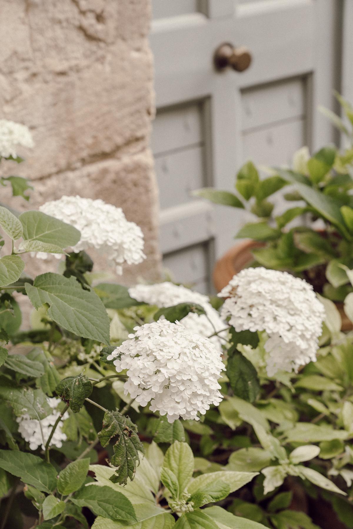 Hello les amis ! J'espère que vous allez bien et que vous passez un bon début de mois d'août :) Merci de tous vos retours suite à mon précédent article sur notre séjour en Provence ! Après vous avoir emmené à Ménerbes, Oppède-le-Vieux et L'Isle-sur-la-Sorgue, on part cette fois-ci à Bonnieux, Apt, Lacoste et Lourmarin !