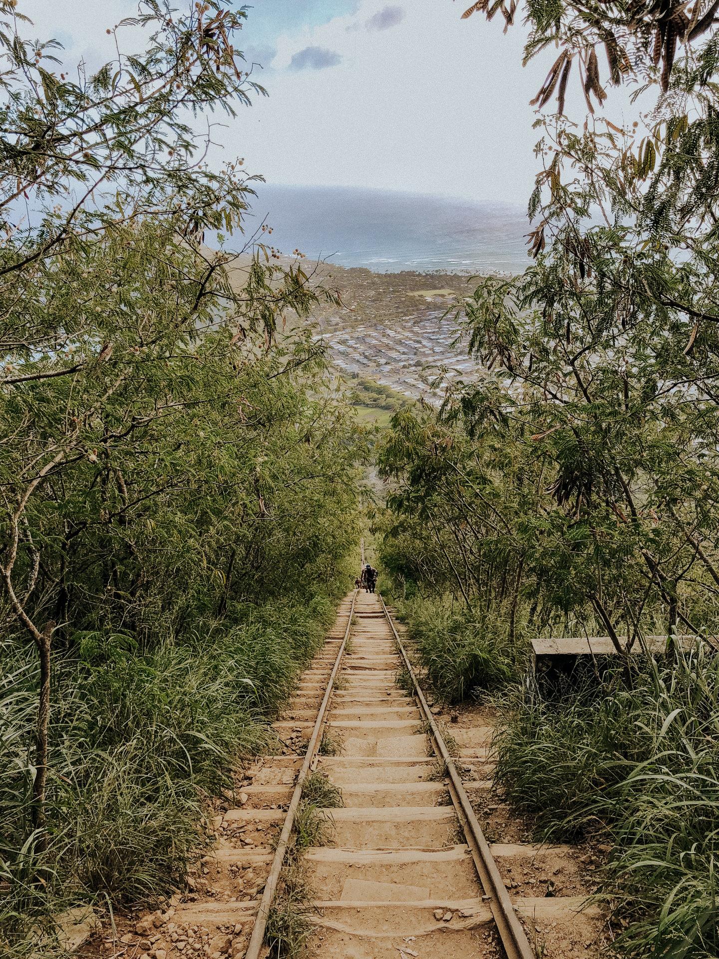 koko-crater-trail-oahu-hawai-8053