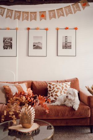 Voici comment j'ai décoré notre appartement pour l'automne - Daphné Moreau - Mode and The City