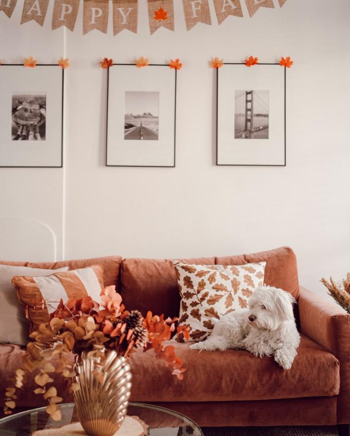decoration-automne-03749